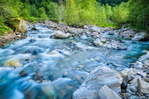 Die reine Natur findet sich in den ausgedehnten Wäldern und den Gewässern wieder. (#1)
